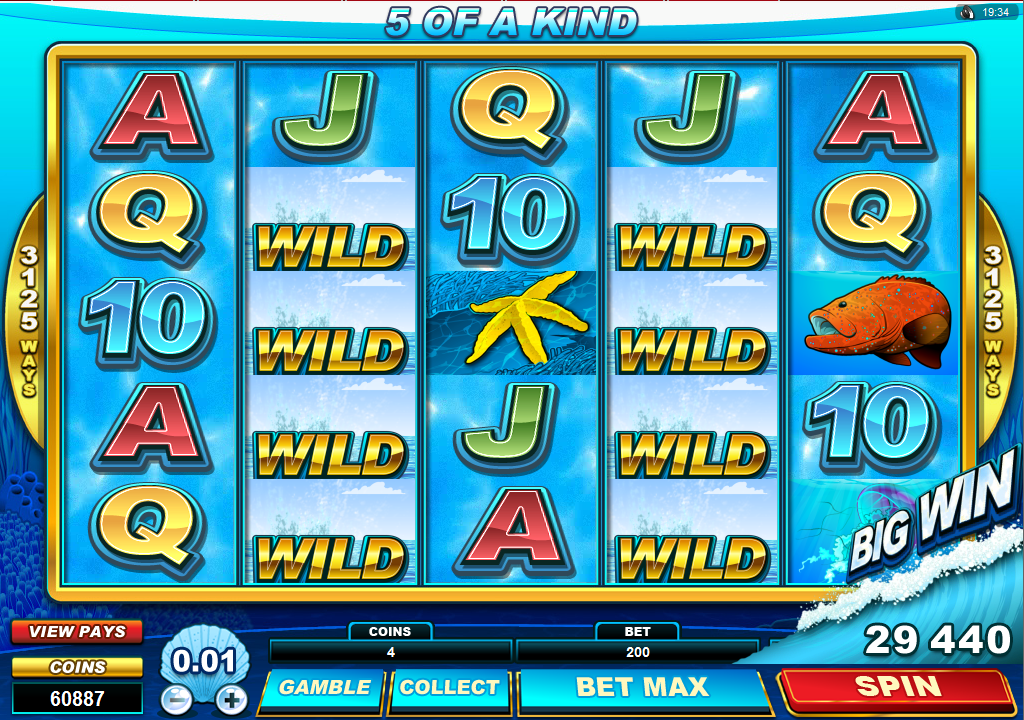 roxy palace casino free slots