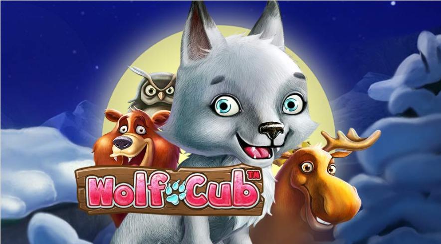 Wolf Cub er klar med ny spændende blizzard funktion