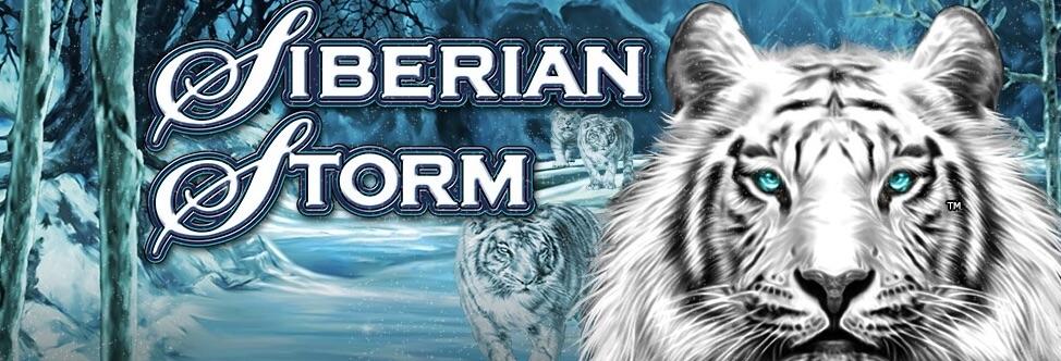 Siberian Storm banner med tigre