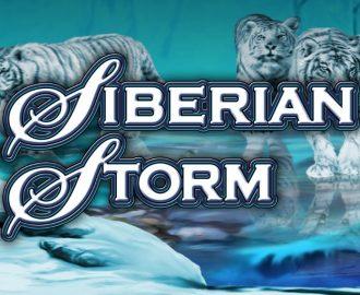 Siberian Storm blåt logo med tigre