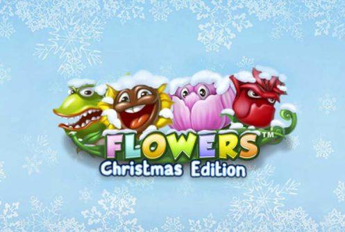 Flowers Christmas Edition Banner med Blomster og Bogstaver