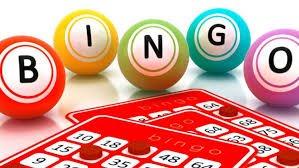 Bingo Kugler og Bingo Plade