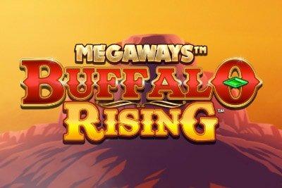 Buffalo Rising Banner