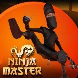 Ninja Master Logo Orange