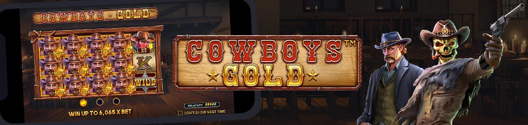 Cowboys Gold Banner